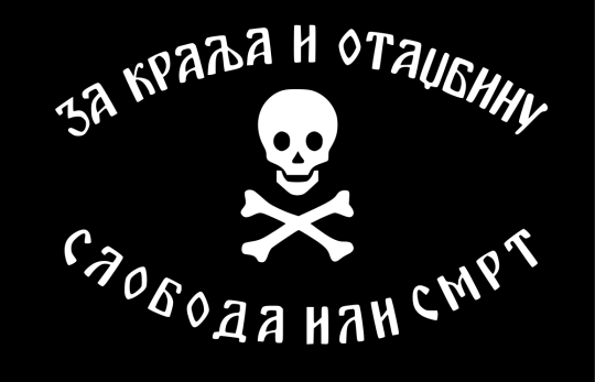 Bandiera dei Cetnci