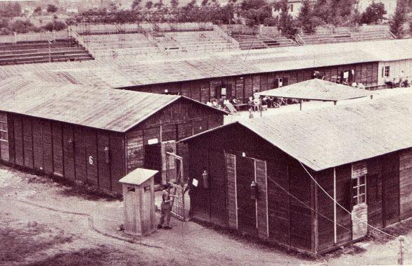 Le baracche nel Campo di Coltano.jpg