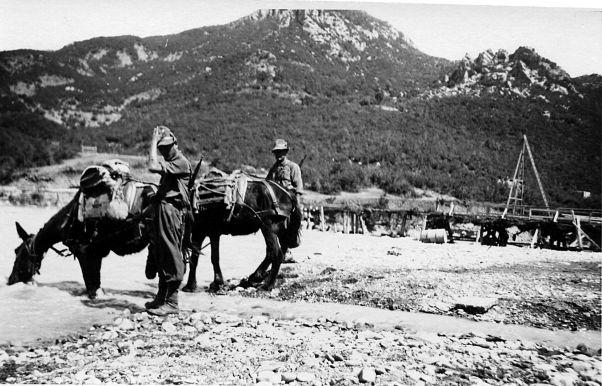 Abbeverata dei muli degli alpini sul fiume Vojussa